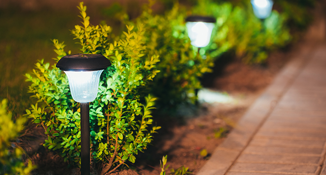 Lighting, Edging, & Irrigation